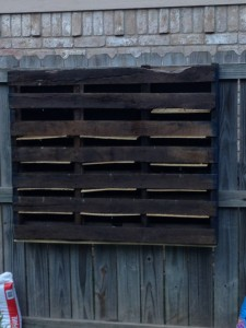 diy hanging pallet backyard fence