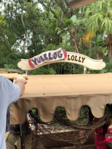 jungle cruise, wdw, family vacation